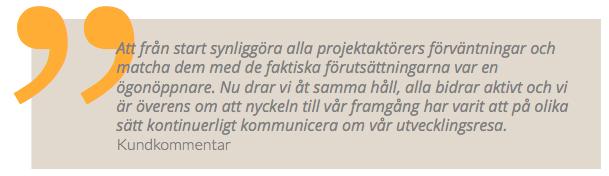 citat projektkommunikation